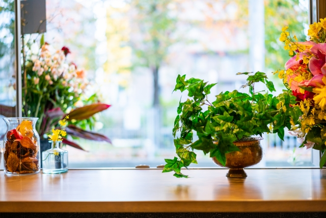植物由来のシャンプー